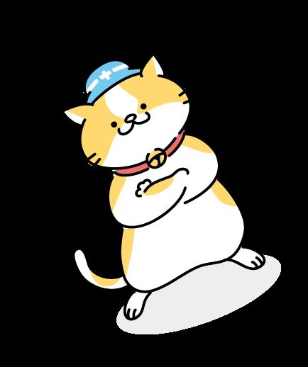 腕を組む猫